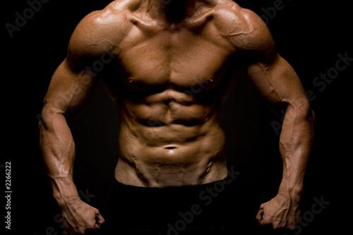 körperfettanteil bodybuilder