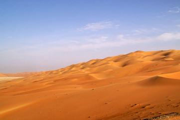 liwa desert 13