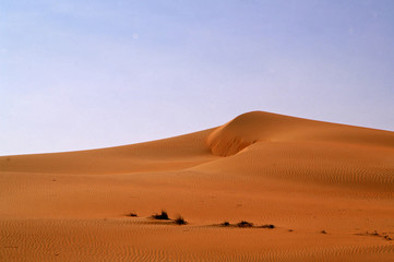 liwa desert 12
