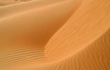 liwa desert 7