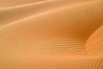 liwa desert  6