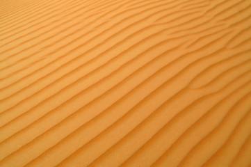 liwa desert 3
