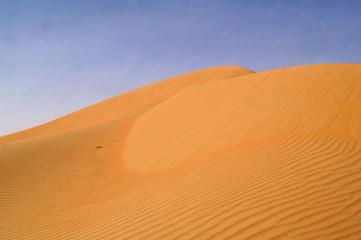 liwa desert 2