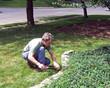 man trimming grass