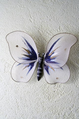 the decorative butterfly