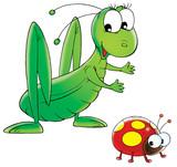 grasshopper and ladybird poster