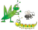 grasshopper, caterpillar and fly poster