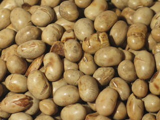 roasted soya-bean close-up