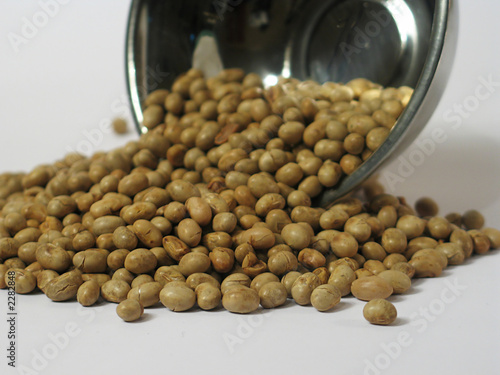 roasted soybean