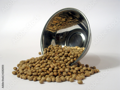 soya bean roasted