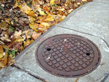 drain cover and autumn leaves poster