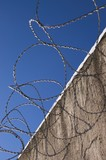barbed_wire-01