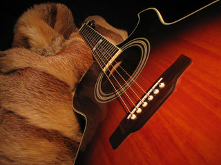 guitar and a fur coat