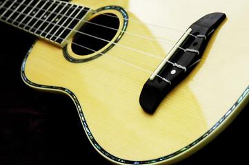 acoustic guitar ukelele
