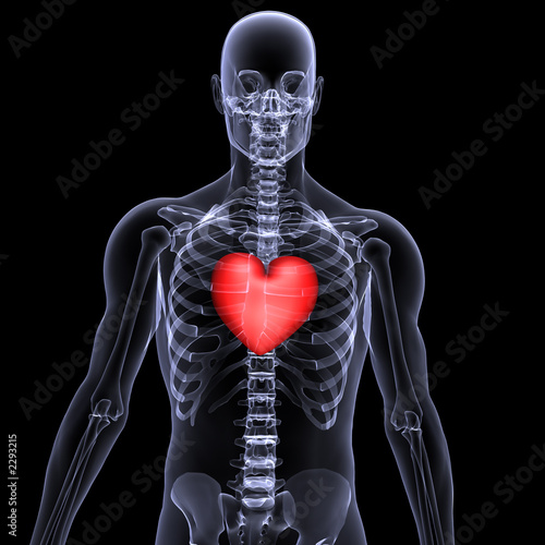 skeleton x-ray valentine heart 2