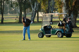left handed golfer with cart poster