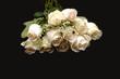 closeup of a dozen white roses