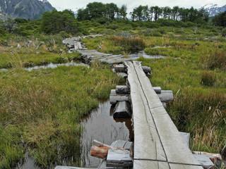 crossing the marsh