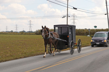 amish horse and buggy