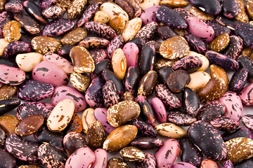 colored beans background