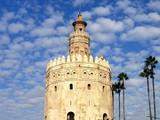 tower del oro poster