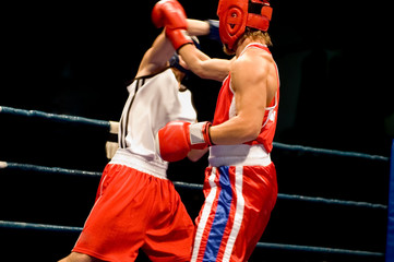 dynamic boxing fight