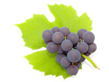 cluster of a grapes poster