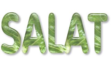 motiv-headline 3d: salat