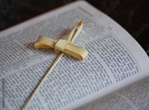 palm frawn on bible