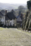scenic cottages and lane in english town poster