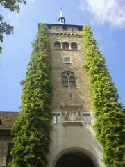 svizzera - torre