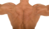 back of a muscular man poster