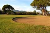 terrain de golf international poster