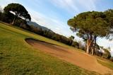 terrain de golf cannes international poster