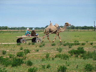 voyage on rural taxi