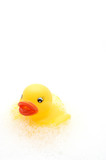 yellow rubber duck in bubbles poster