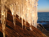 wood and icicles