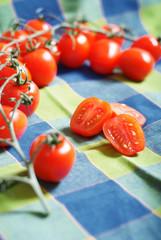 tomaten auf tuch1