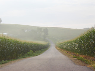 wisconsin road in farmland