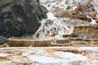������, ������: geyser at mammoth hot springs