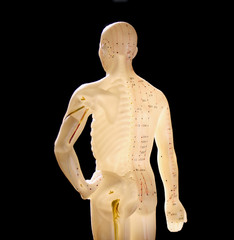 figure showing acupuncture points