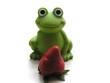 frosch_01