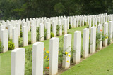 headstones in a war cemetery poster