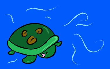 tartaruga bebè
