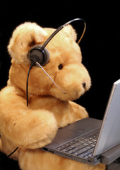 bear customer service