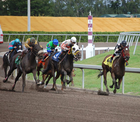 racing at gulfstream