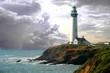 Leinwanddruck Bild - pigeon lighthouse