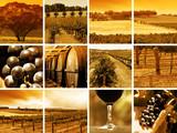 Fototapety wine montage