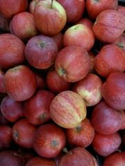 pommes à couteau