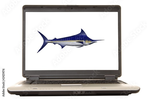laptop marlin
